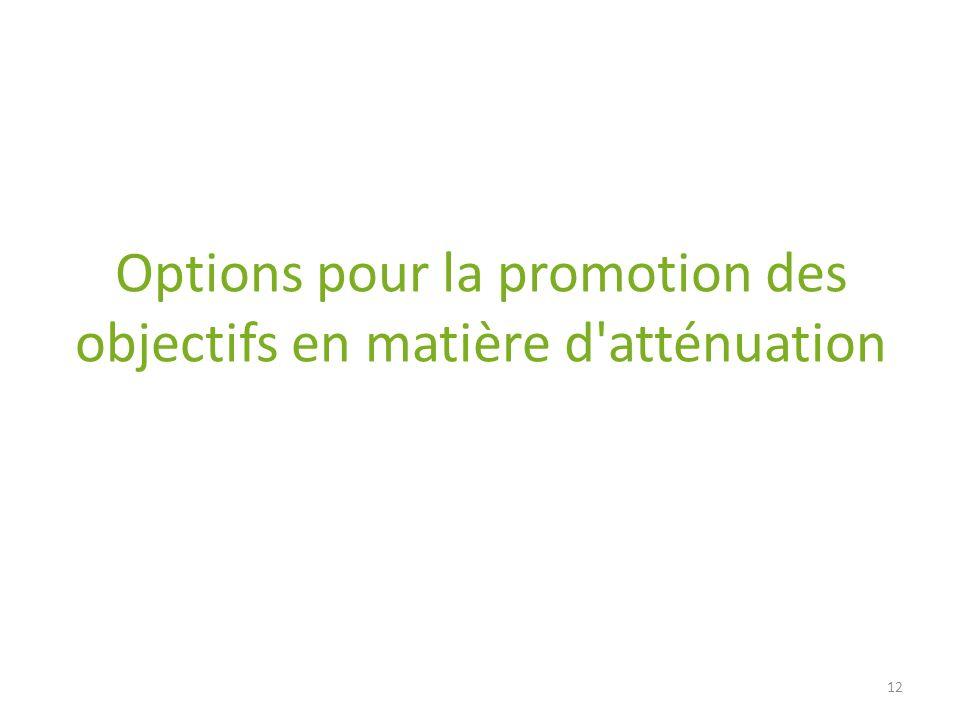 Options pour la promotion des objectifs en matière d'atténuation 12