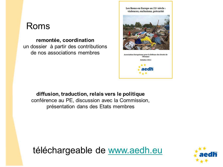 Roms remontée, coordination un dossier à partir des contributions de nos associations membres diffusion, traduction, relais vers le politique conféren