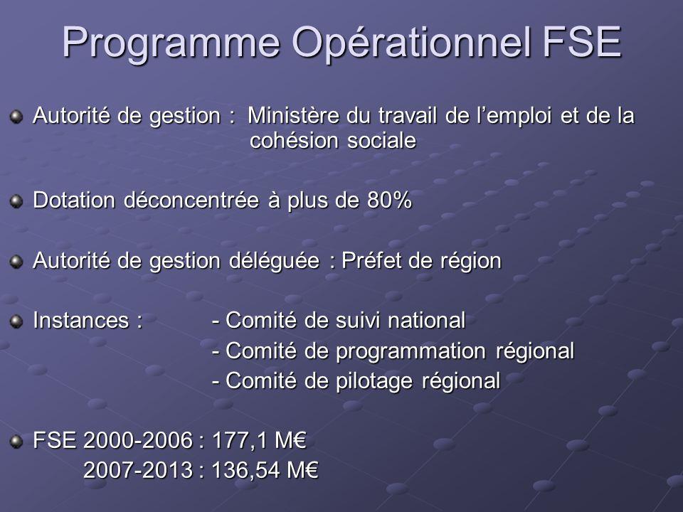 Programme Opérationnel FSE Autorité de gestion : Ministère du travail de lemploi et de la cohésion sociale Dotation déconcentrée à plus de 80% Autorit