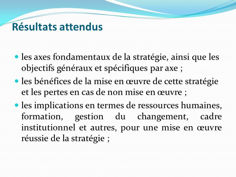 Résultats attendus les axes fondamentaux de la stratégie, ainsi que les objectifs généraux et spécifiques par axe ; les bénéfices de la mise en œuvre de cette stratégie et les pertes en cas de non mise en œuvre ; les implications en termes de ressources humaines, formation, gestion du changement, cadre institutionnel et autres, pour une mise en œuvre réussie de la stratégie ;