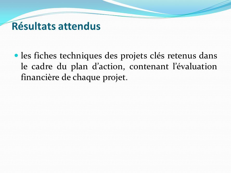 Résultats attendus les fiches techniques des projets clés retenus dans le cadre du plan daction, contenant lévaluation financière de chaque projet.