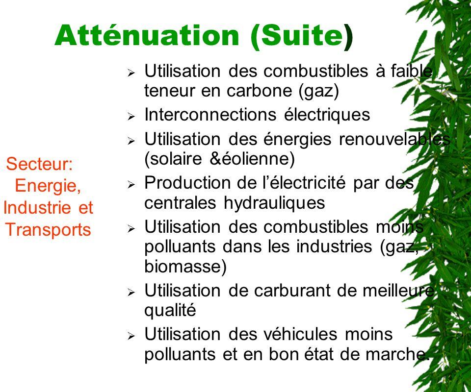 Atténuation (Suite) Agriculture et Elevage Intensification de lagriculture par : Technique de conservation et de restauration des sols Conservation et valorisation des eaux.