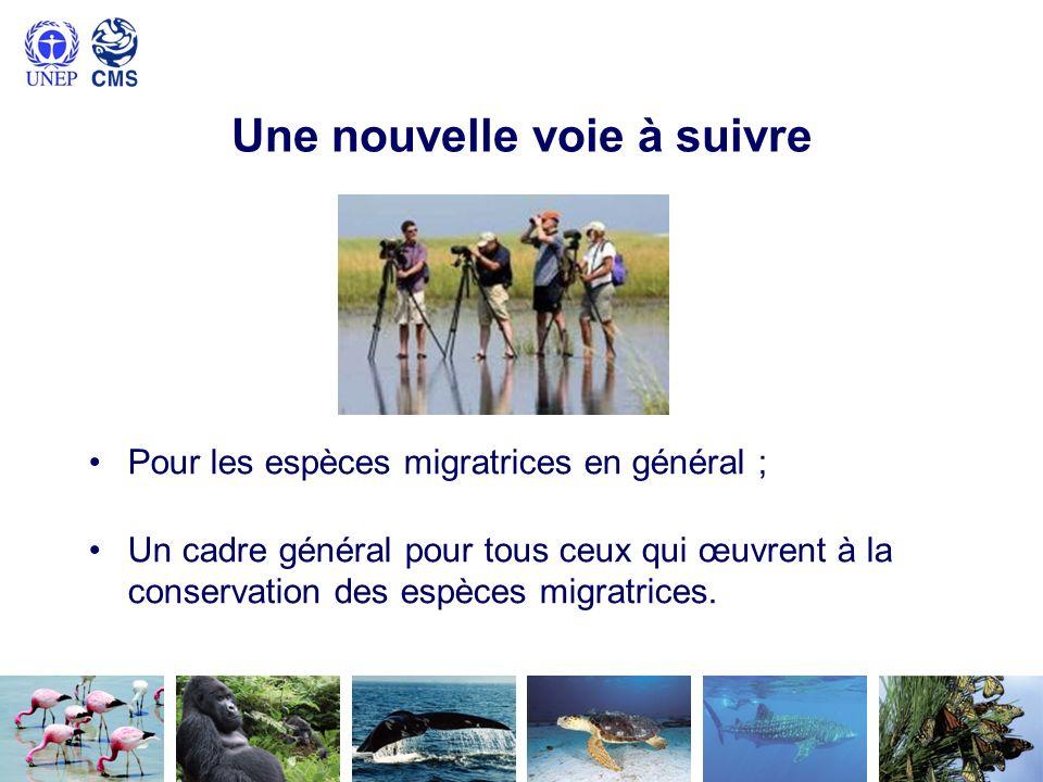Approche des Objectifs dAichi Sappuyer sur le Plan stratégique pour la biodiversité et les Objectifs dAichi pour la biodiversité ; Bénéficier de leur visibilité et soutien politiques ; Contribuer à latteinte des Objectifs dAichi ; Utiliser des mécanismes de soutien existants; Identifier la pertinence des Objectifs dAichi pour les espèces migratrices, et vice versa ; Élaborer des objectifs globaux pour les espèces migratrices ; Élaborer des objectifs plus spécifiques pour certains instruments de la CMS.