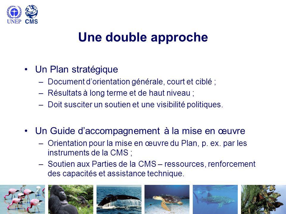 Une double approche Un Plan stratégique –Document dorientation générale, court et ciblé ; –Résultats à long terme et de haut niveau ; –Doit susciter u