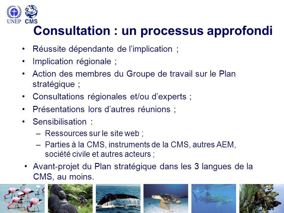 Consultation : un processus approfondi Réussite dépendante de limplication ; Implication régionale ; Action des membres du Groupe de travail sur le Pl