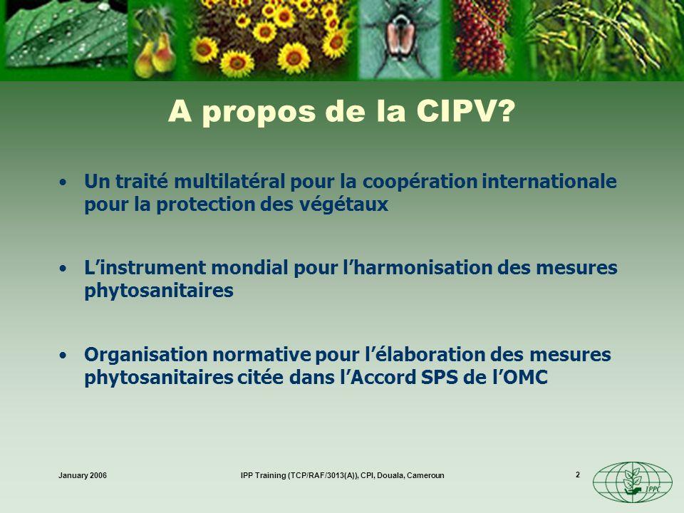 January 2006IPP Training (TCP/RAF/3013(A)), CPI, Douala, Cameroun 13 Révision de la CIPV Moderniser la CIPV –commerce Besoin dharmonisation avec laccord SPS-OMC –élaboration de normes Institutionnalisation (1992: officialise le Secrétariat et la procédure de normalisation) –FAO = Secrétariat de la CIPV (au sein du Service de la protection des plantes de la FAO) –national Conférence de la FAO –Adopté en 1997 –Entré en vigueur après lacceptation par les 2/3 des parties contractantes...