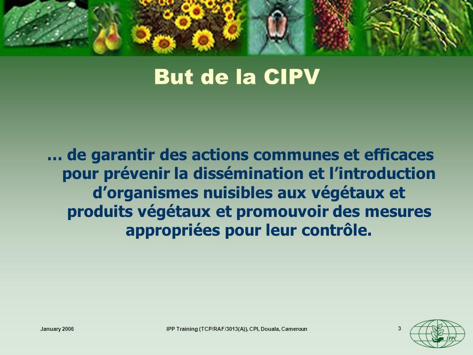 January 2006IPP Training (TCP/RAF/3013(A)), CPI, Douala, Cameroun 4 Appartenance Novembre 2005: 142 Parties contractantes (au texte de 1979) Comprend la plupart des partenaires commerciaux comprise la Chine et la Communauté Européenne Les organisations régionales de protection des végétaux ne sont pas membres de la CIPV.