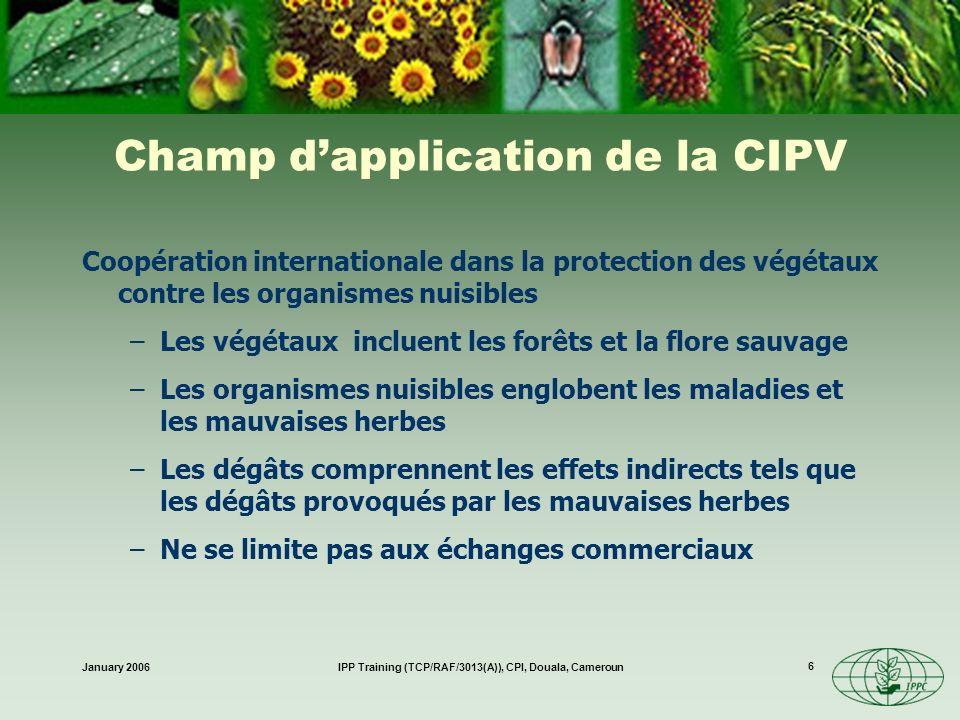 January 2006IPP Training (TCP/RAF/3013(A)), CPI, Douala, Cameroun 17 Communication Léchange dinformations est central Les 3 domaines de travail primordiaux dans le programme du CIMP sont les suivants I.Fixation des normes II.Échange dinformations III.Assistance technique