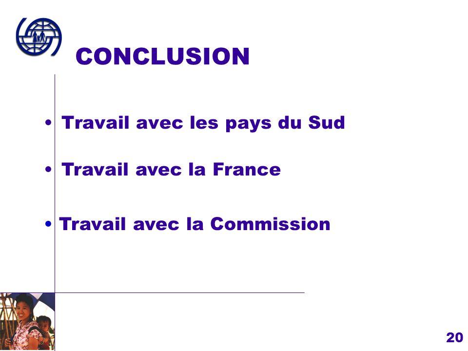 20 CONCLUSION Travail avec les pays du Sud Travail avec la Commission Travail avec la France