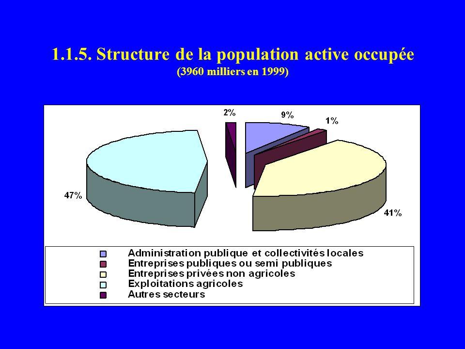 1.1.5. Structure de la population active occupée (3960 milliers en 1999)