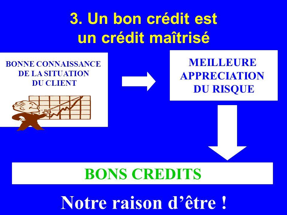 3. Un bon crédit est un crédit maîtrisé BONNE CONNAISSANCE DE LA SITUATION DU CLIENT MEILLEURE APPRECIATION DU RISQUE BONS CREDITS Notre raison dêtre