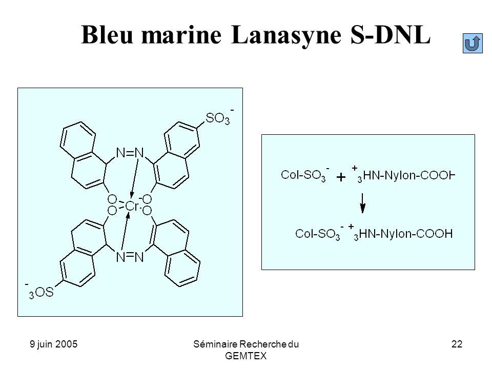 9 juin 2005Séminaire Recherche du GEMTEX 22 Bleu marine Lanasyne S-DNL