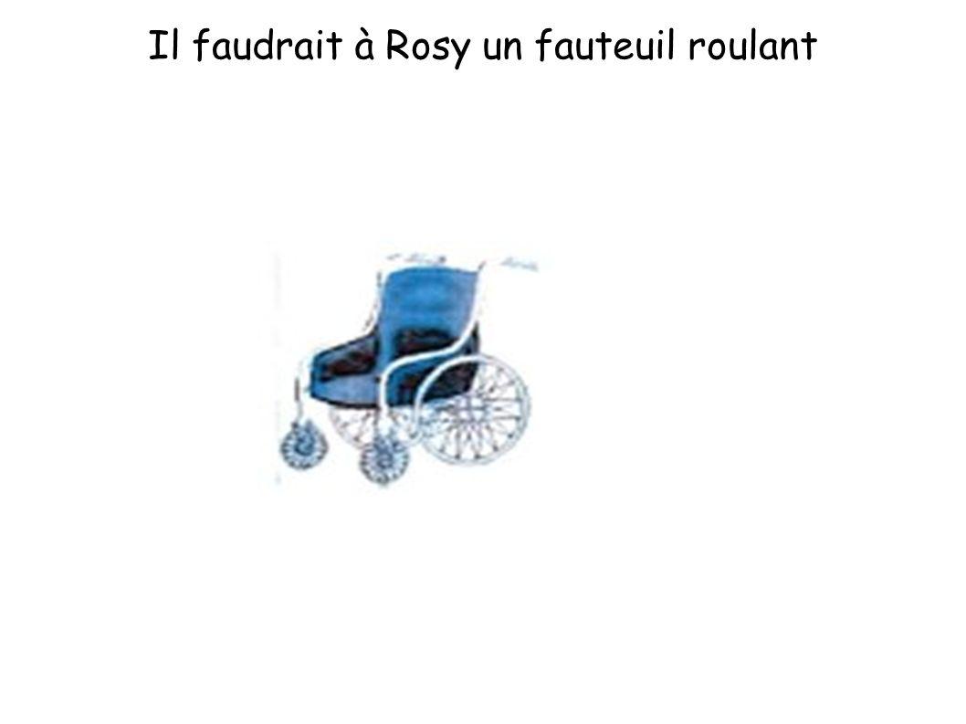 Il faudrait à Rosy un fauteuil roulant