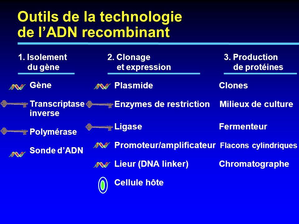 1. Isolement 2. Clonage3. Production du gène et expression de protéines Plasmide Clones Enzymes de restriction Milieux de culture Ligase Fermenteur Pr