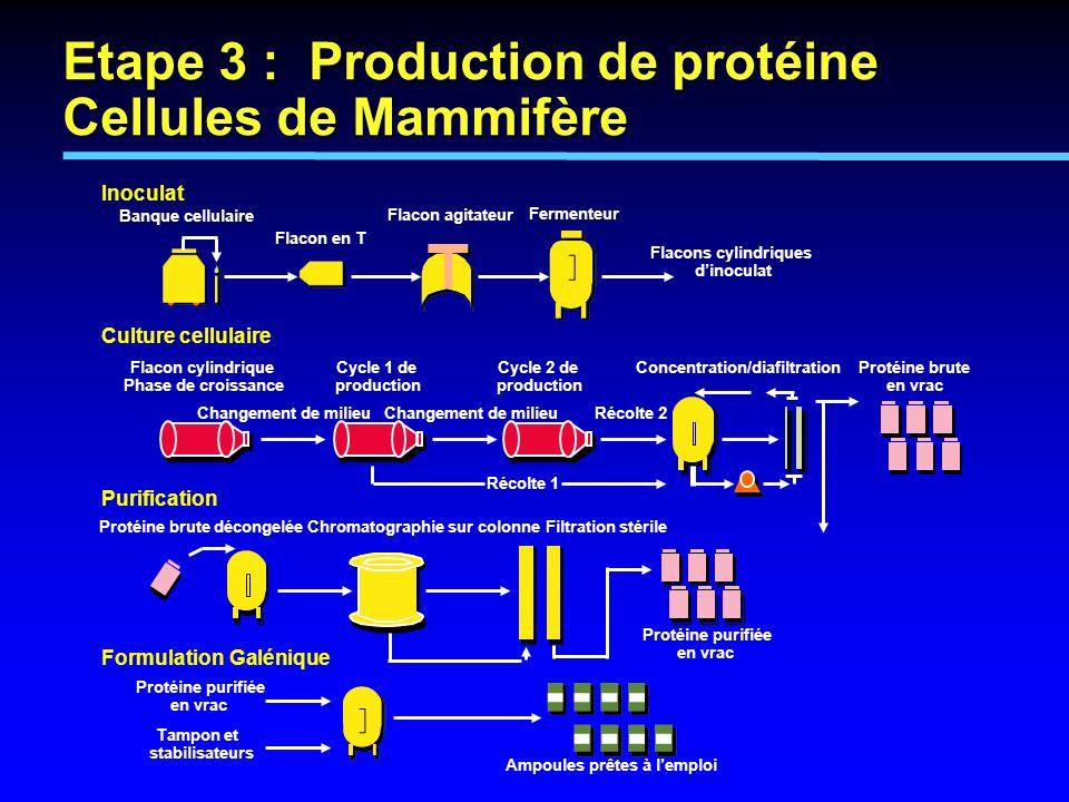 Inoculat Culture cellulaire Purification Formulation Galénique Banque cellulaire Flacon en T Flacon agitateur Fermenteur Flacons cylindriques dinocula