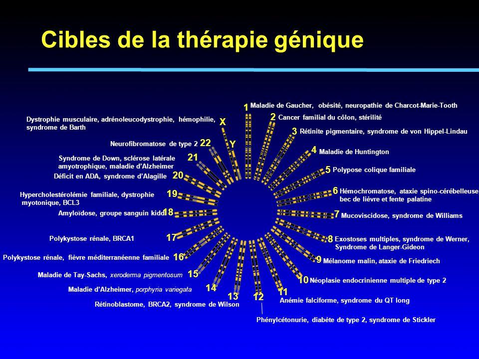 Maladie de Gaucher, obésité, neuropathie de Charcot-Marie-Tooth Cancer familial du côlon, stérilité Rétinite pigmentaire, syndrome de von Hippel-Linda