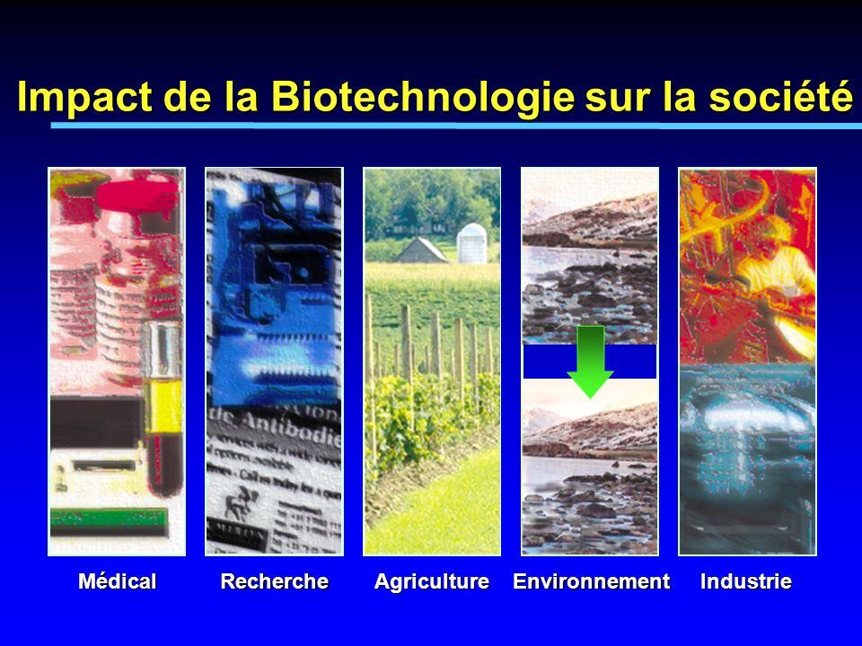 MédicalRechercheAgricultureEnvironnementIndustrie Impact de la Biotechnologie sur la société