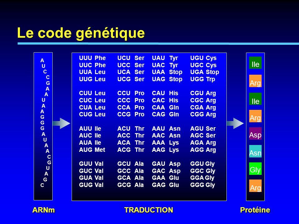 Gène sur le chromosome (ADN) Chromosome ARNm pré-ARNm Protéine Transcription Traduction Séquence de tête Intron 1 Exon 3 Exon 2 Exon 1 Intron 2 Splicéosome Séquence de terminaison Introns et Exons dans la transcription des gènes