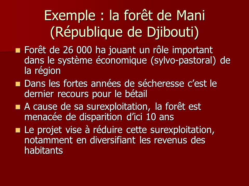 Exemple : la forêt de Mani (République de Djibouti) Forêt de 26 000 ha jouant un rôle important dans le système économique (sylvo-pastoral) de la régi