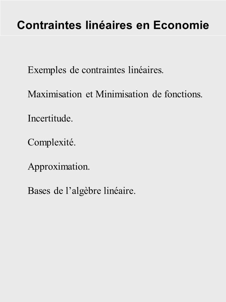 Contraintes linéaires en Economie Exemples de contraintes linéaires. Maximisation et Minimisation de fonctions. Incertitude. Complexité. Approximation