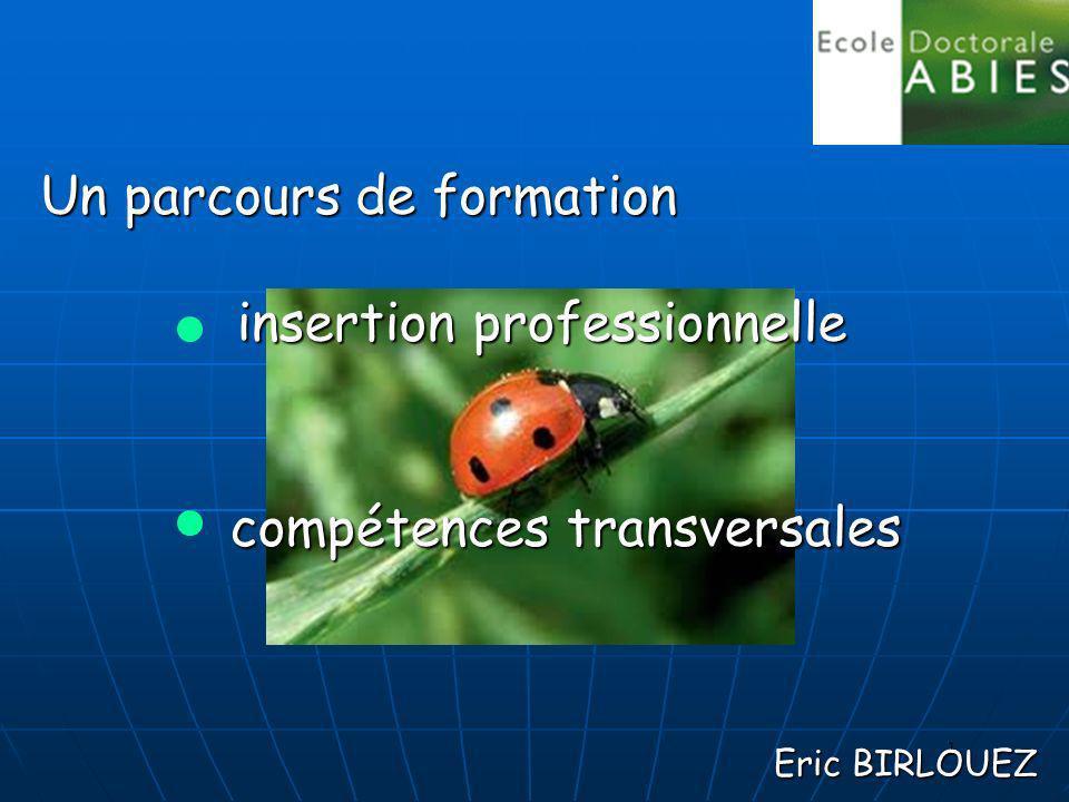 1 Eric BIRLOUEZ insertion professionnelle insertion professionnelle compétences transversales compétences transversales Un parcours de formation