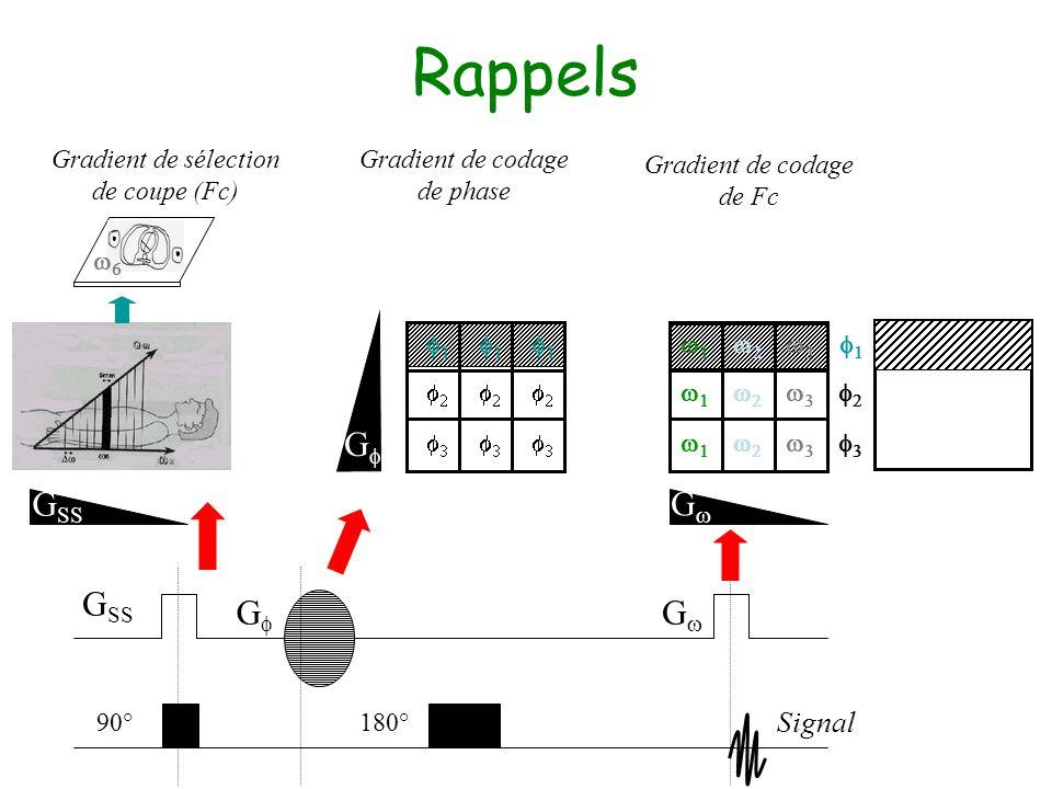 Rappels Signal 90° Gradient de sélection de coupe (Fc) G SS G G 180° Gradient de codage de Fc Gradient de codage de phase G SS G G