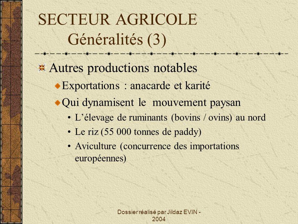 Dossier réalisé par Jildaz EVIN - 2004 SECTEUR AGRICOLE Généralités (3) Autres productions notables Exportations : anacarde et karité Qui dynamisent l