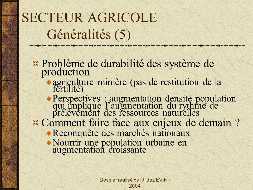 Dossier réalisé par Jildaz EVIN - 2004 SECTEUR AGRICOLE Généralités (5) Problème de durabilité des système de production agriculture minière (pas de r