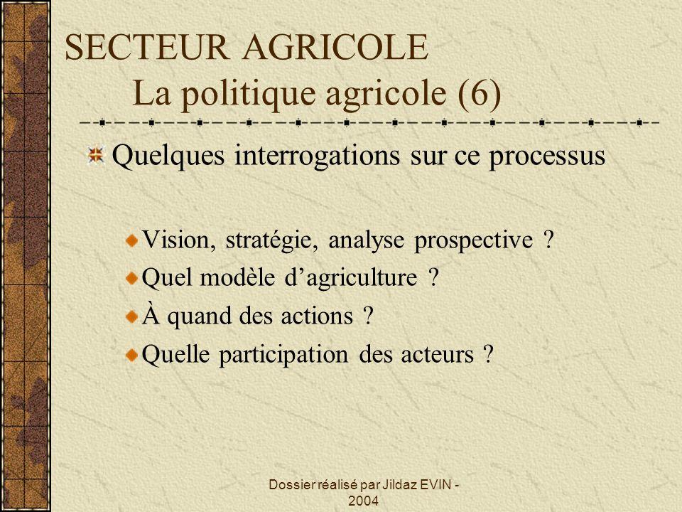 Dossier réalisé par Jildaz EVIN - 2004 SECTEUR AGRICOLE La politique agricole (6) Quelques interrogations sur ce processus Vision, stratégie, analyse