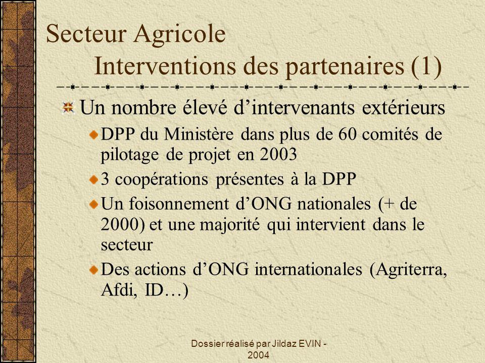 Dossier réalisé par Jildaz EVIN - 2004 Secteur Agricole Interventions des partenaires (1) Un nombre élevé dintervenants extérieurs DPP du Ministère da