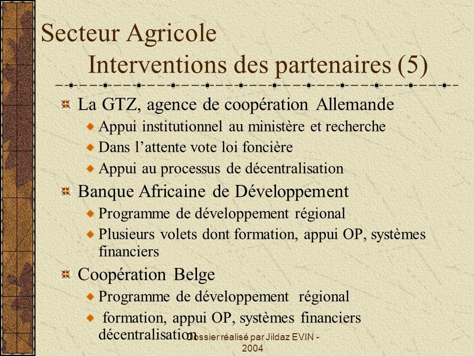 Dossier réalisé par Jildaz EVIN - 2004 Secteur Agricole Interventions des partenaires (5) La GTZ, agence de coopération Allemande Appui institutionnel