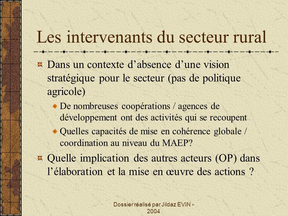 Dossier réalisé par Jildaz EVIN - 2004 Les intervenants du secteur rural Dans un contexte dabsence dune vision stratégique pour le secteur (pas de pol