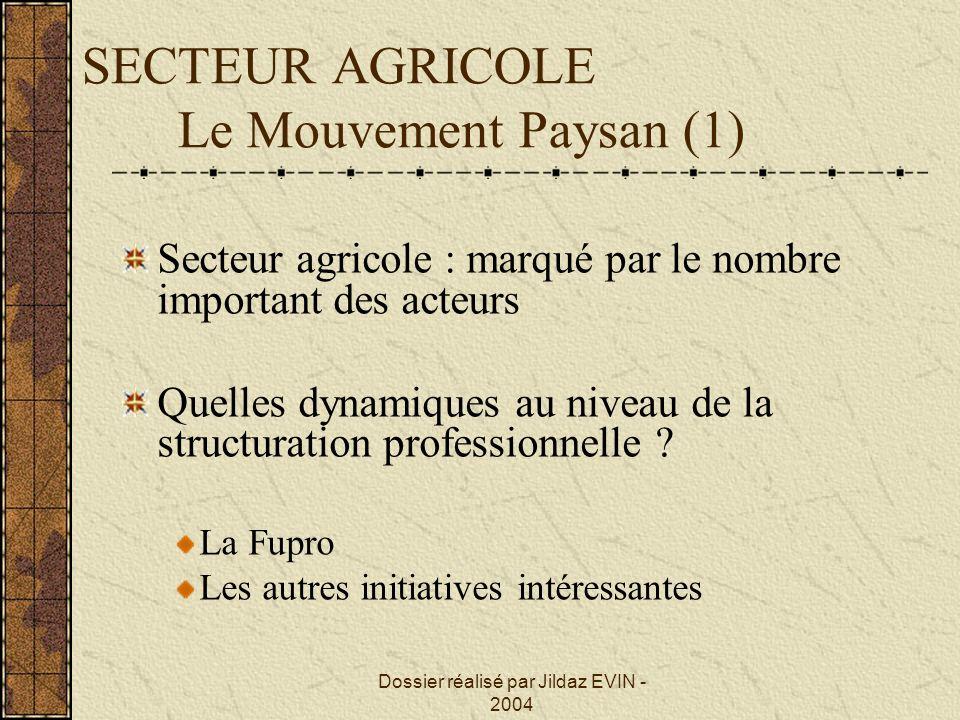Dossier réalisé par Jildaz EVIN - 2004 SECTEUR AGRICOLE Le Mouvement Paysan (1) Secteur agricole : marqué par le nombre important des acteurs Quelles