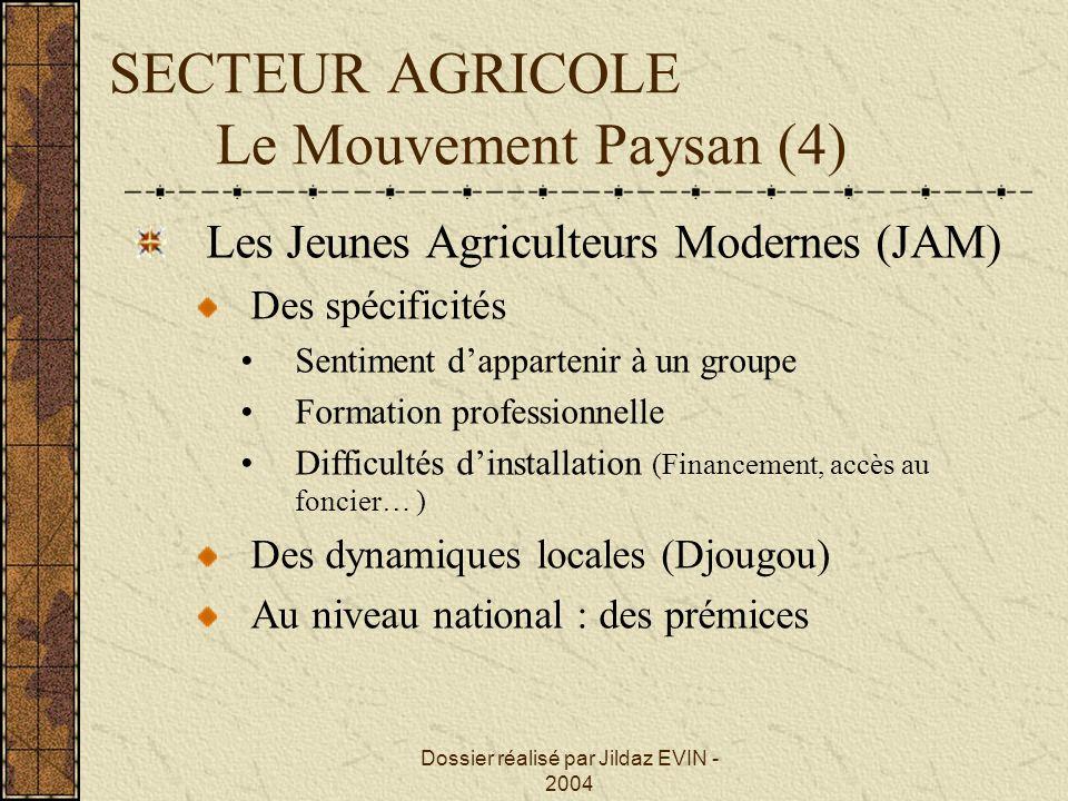 Dossier réalisé par Jildaz EVIN - 2004 SECTEUR AGRICOLE Le Mouvement Paysan (4) Les Jeunes Agriculteurs Modernes (JAM) Des spécificités Sentiment dapp