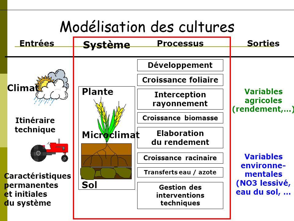 Processus Développement Gestion des interventions techniques Croissance foliaire Interception rayonnement Croissance biomasse Elaboration du rendement