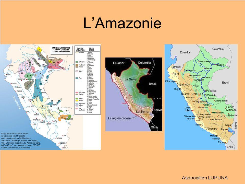 Laccalmie… Suspension du décret sur lexploitation forestière du N-E Amazonien Le Parlement du Pérou, réuni en session extraordinaire, a suspendu mercredi 10 juin pour 90 jours le décret N°1090 sur l exploitation forestière du Nord-Est amazonien, à l origine d une crise avec les communautés indiennes, et d affrontements qui ont fait au moins 34 morts la semaine dernière.