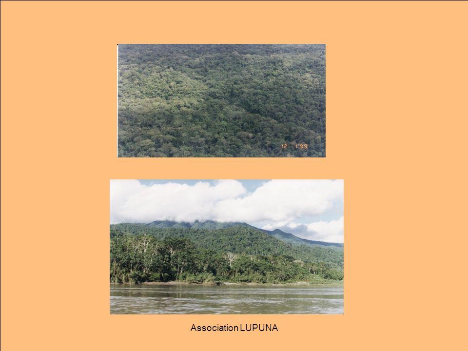Retour sur lHistoire de lAmazonie Au nom du progrès, durant toute lhistoire du Pérou, le « développement » a eu lieu grâce à lextraction des ressources naturelles.