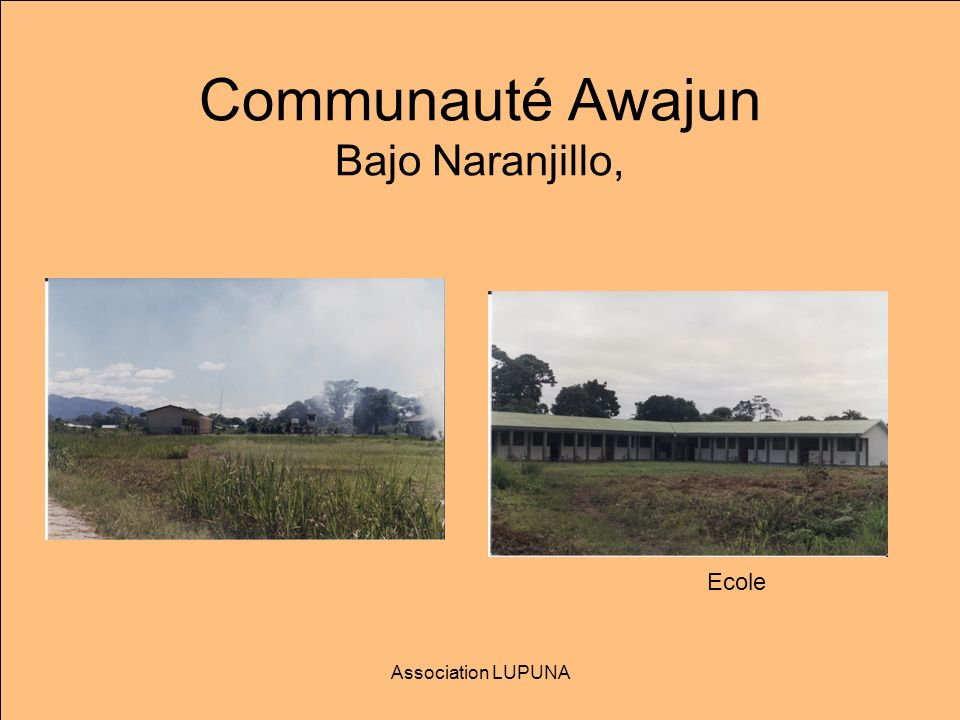 Communauté Awajun Bajo Naranjillo, Association LUPUNA Ecole