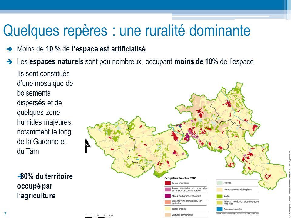 7 Quelques repères : une ruralité dominante Moins de 10 % de lespace est artificialisé Les espaces naturels sont peu nombreux, occupant moins de 10% d