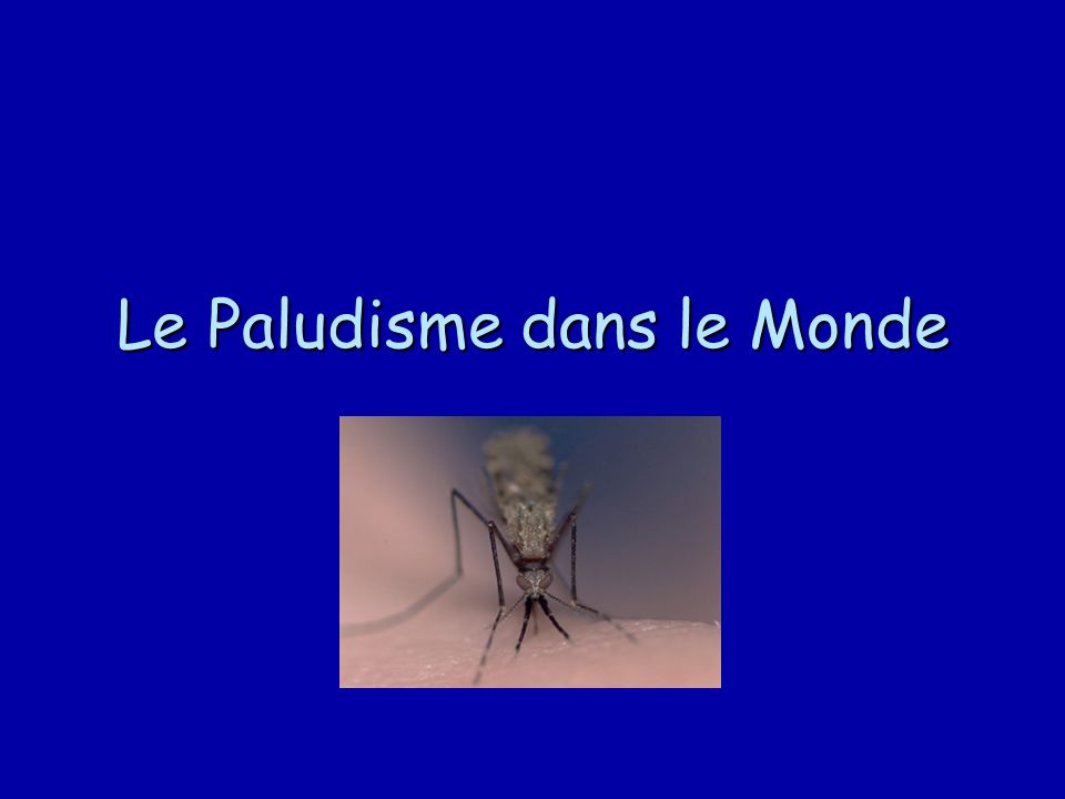 Le Paludisme dans le Monde