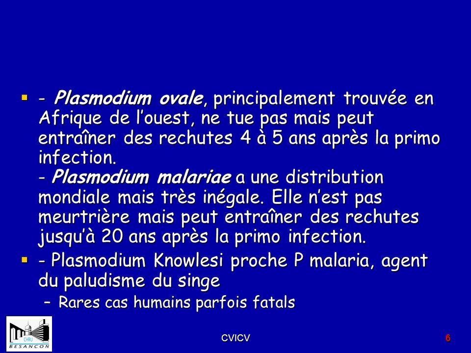 - Plasmodium ovale, principalement trouvée en Afrique de louest, ne tue pas mais peut entraîner des rechutes 4 à 5 ans après la primo infection. - Pla