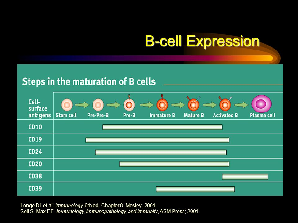 B-cell Expression Longo DL et al. Immunology. 6th ed. Chapter 8. Mosley; 2001. Sell S, Max EE. Immunology, Immunopathology, and Immunity, ASM Press; 2