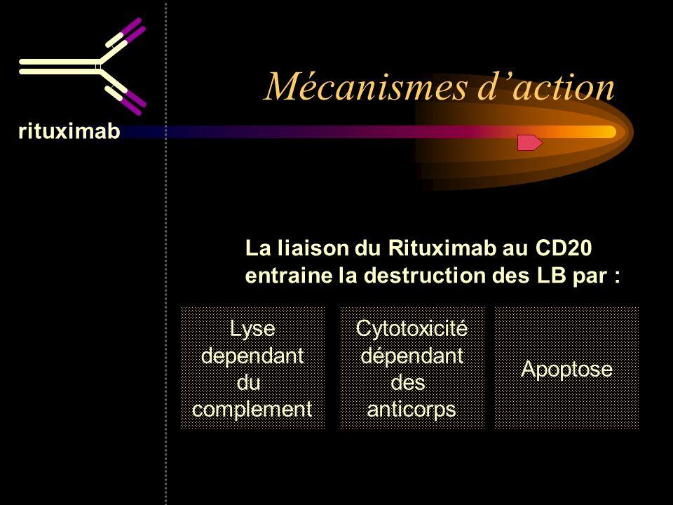 rituximab La liaison du Rituximab au CD20 entraine la destruction des LB par : Lyse dependant du complement Cytotoxicité dépendant des anticorps Apopt