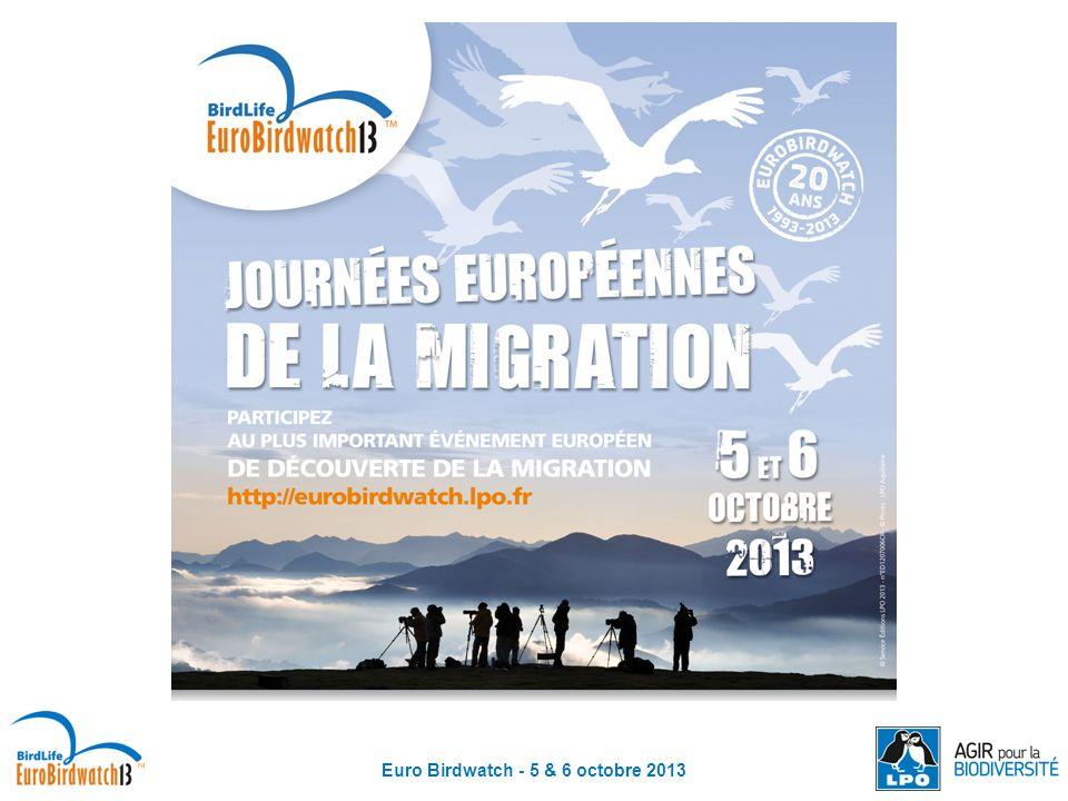 Euro Birdwatch - 5 & 6 octobre 2013 Pour mieux connaître les oiseaux migrateurs et ainsi mieux les protéger, il existe différents outils de suivi : Suivre les oiseaux migrateurs Le baguage Le suivi par balise Argos et GPS Le radar
