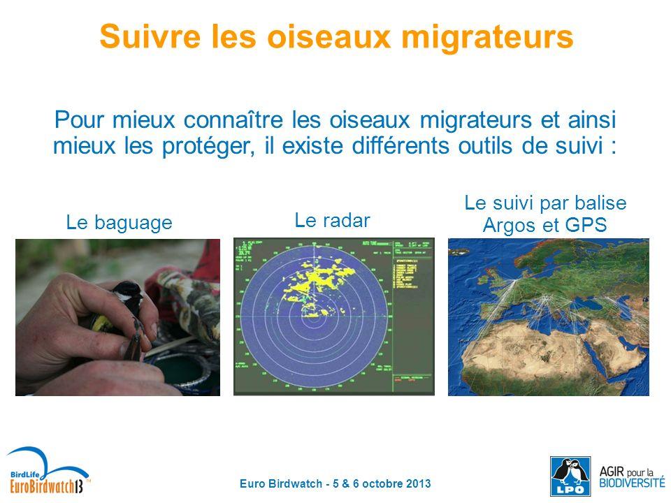Euro Birdwatch - 5 & 6 octobre 2013 Pour mieux connaître les oiseaux migrateurs et ainsi mieux les protéger, il existe différents outils de suivi : Su