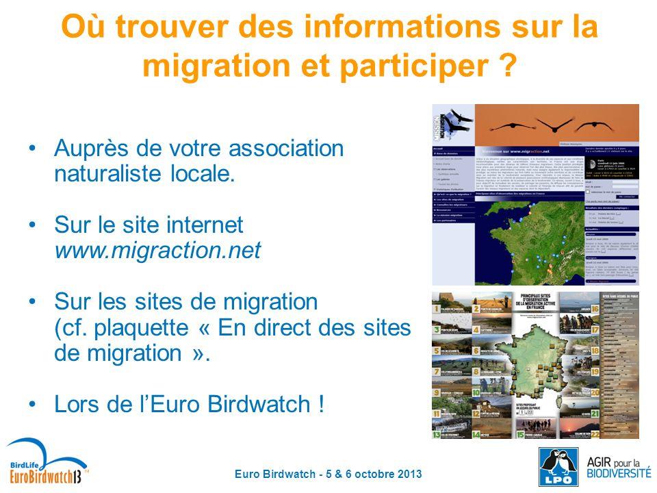 Euro Birdwatch - 5 & 6 octobre 2013 Où trouver des informations sur la migration et participer ? Auprès de votre association naturaliste locale. Sur l