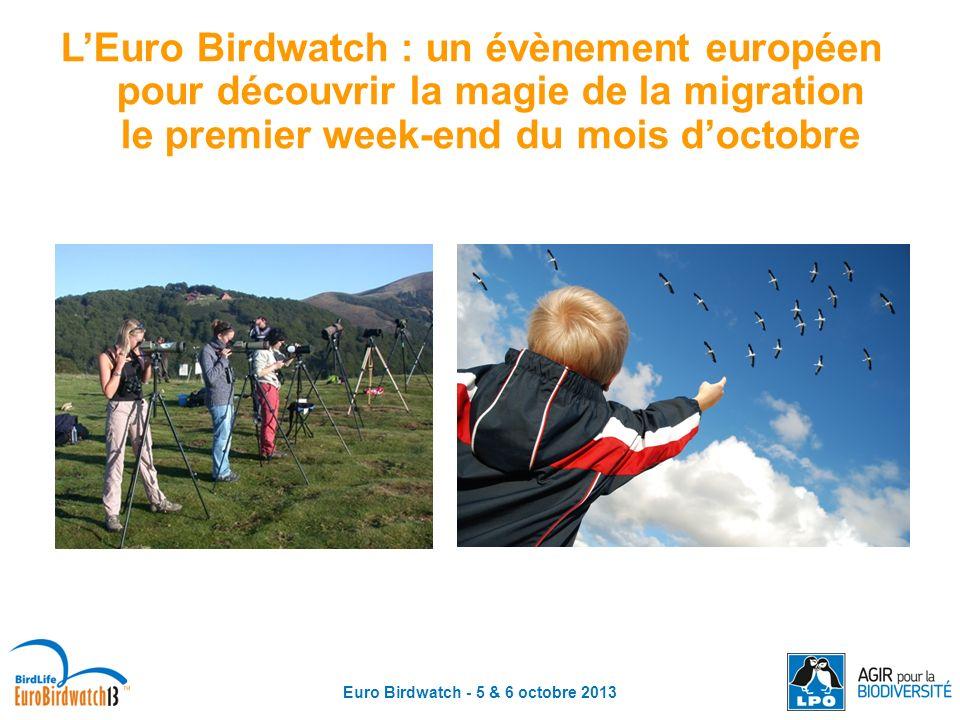 Euro Birdwatch - 5 & 6 octobre 2013 Où trouver des informations sur la migration et participer .