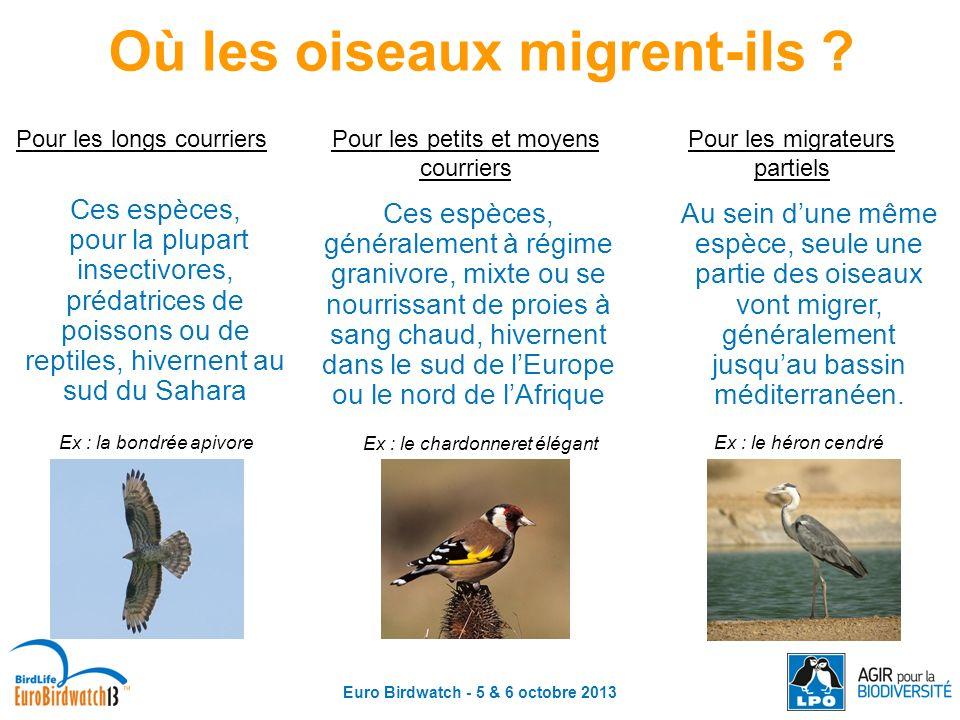 Euro Birdwatch - 5 & 6 octobre 2013 Pour les longs courriers Pour les petits et moyens courriers Pour les migrateurs partiels Ces espèces, pour la plu