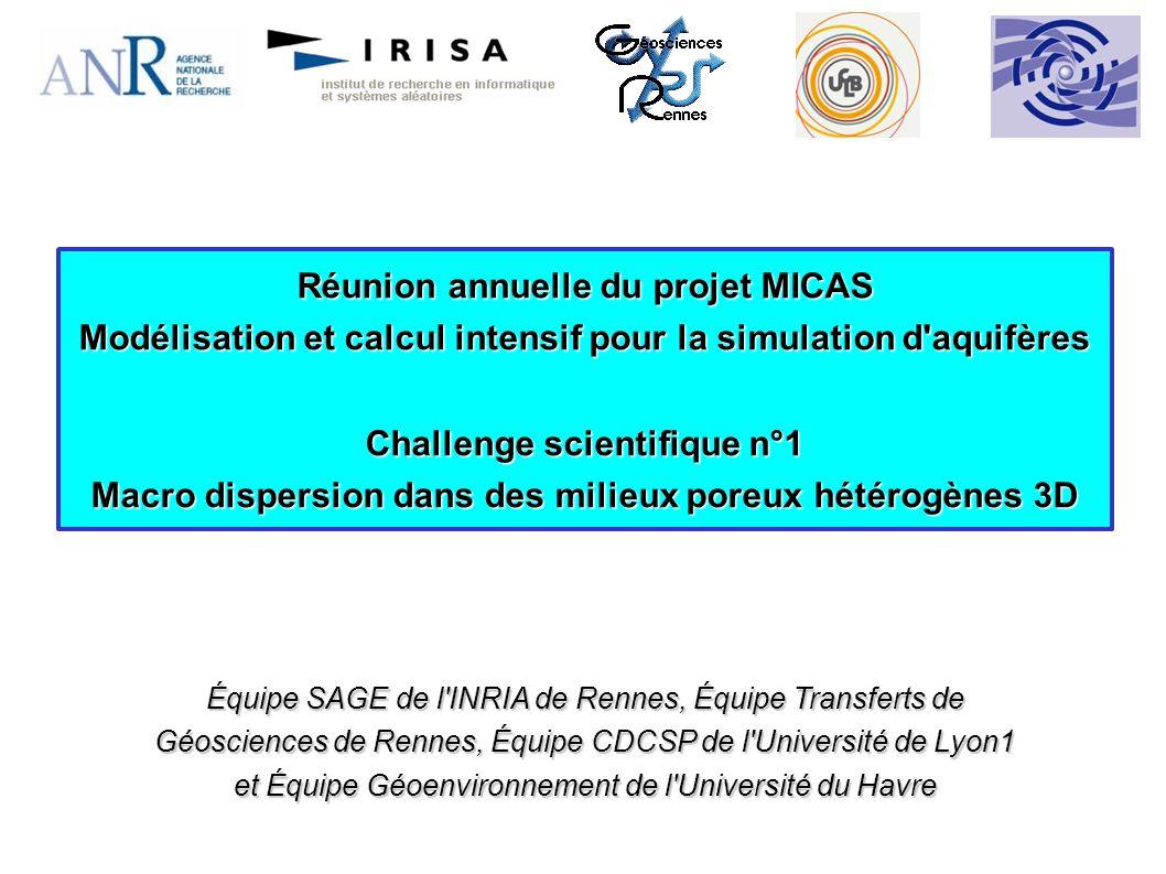 1- Rappel sur la notion de macro dispersion Formation géologique hétérogène Effet de lhétérogénéité Un objectif de lANR MICAS Tâche 1 2- Sous tâche T1-2 Modèle physique/mathématique Méthode particulaire avec marche aléatoire Validation 2D/3D 3- Sous tâche T1-3 Tests de non régression pour PARADIS 4- Sous tâches futures T1-1 et T1-4 Post-doctorant Réunion bilan du projet ANR MICAS Plan :