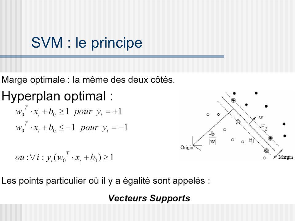 SVM : le principe